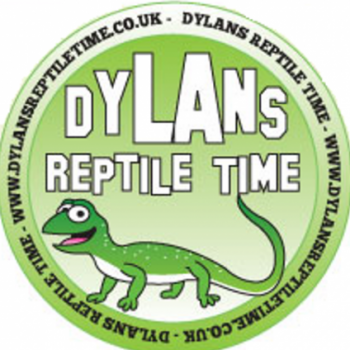 Dylans Reptile Time