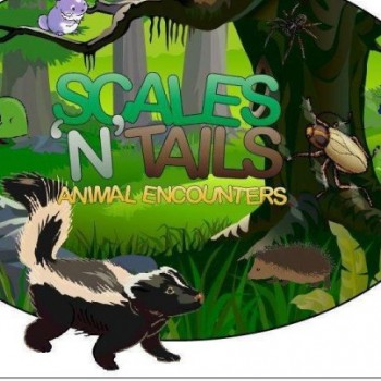Scales - n - Tails