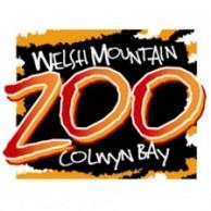 Welsh Mountain Zoo
