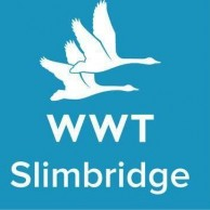 Slimbridge Wetland Centre
